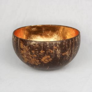 Coconut Bowl Gold Big Front
