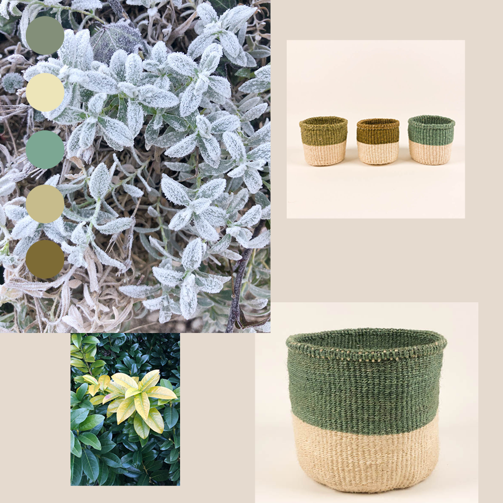 Enchanted Forest Green Sisal Basket Collection Handmade by women in Kenya 4