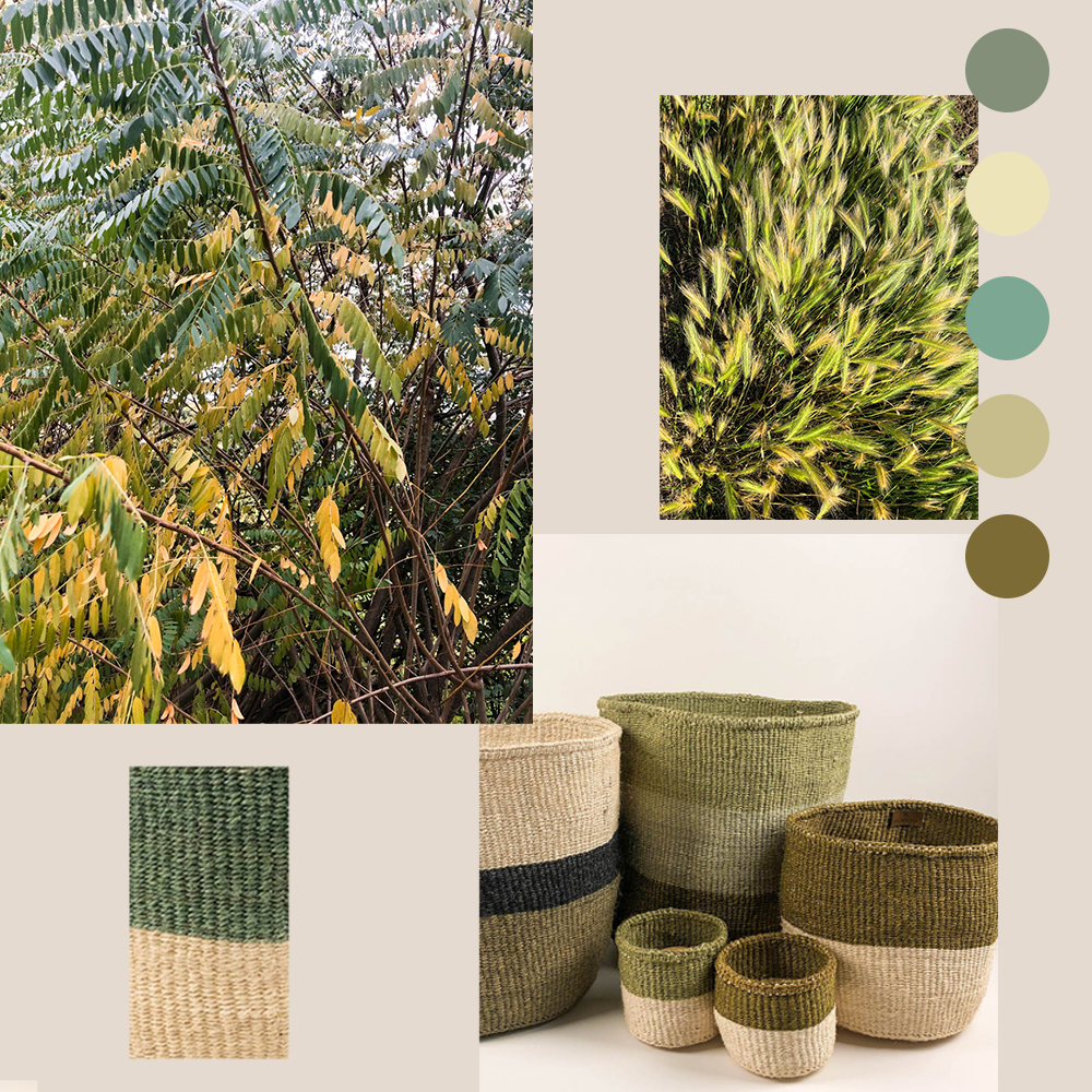 Enchanted Forest Green Sisal Basket Collection Handmade by women in Kenya